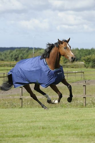 Outdoordecke Turnout Weidedecke Bucas Smartex Rain Big Neck blau 125cm
